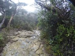Climbing Mount Kinabalu Wet Downhill Slopes
