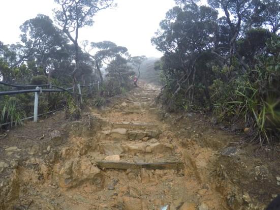 Climbing Mount Kinabalu Paths more muddy and slippery