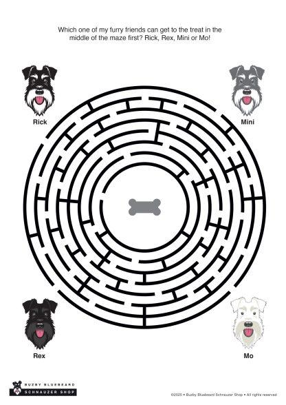 maze puzzle