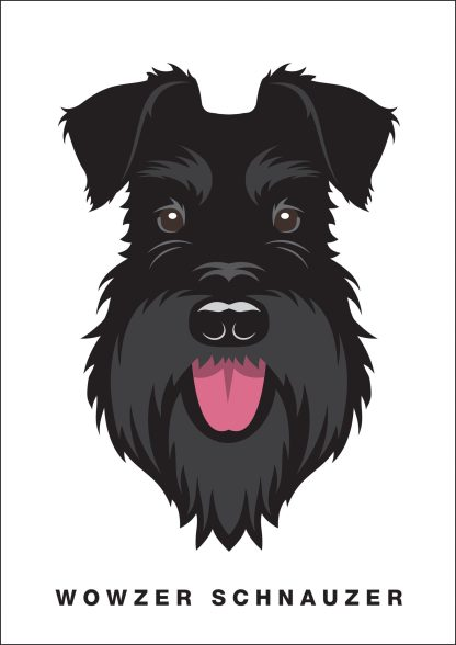 Poster - All Black schnauzer