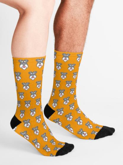Salt & Pepper schnauzer socks on orange background - male and female