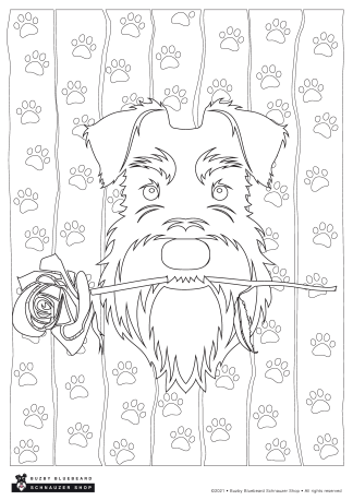 valentines rose colouring sheet