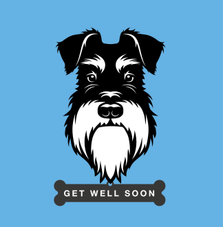 greetings card get well soon silver black schnauzer
