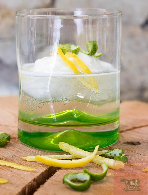 Gin Tonic Zitronensorbet