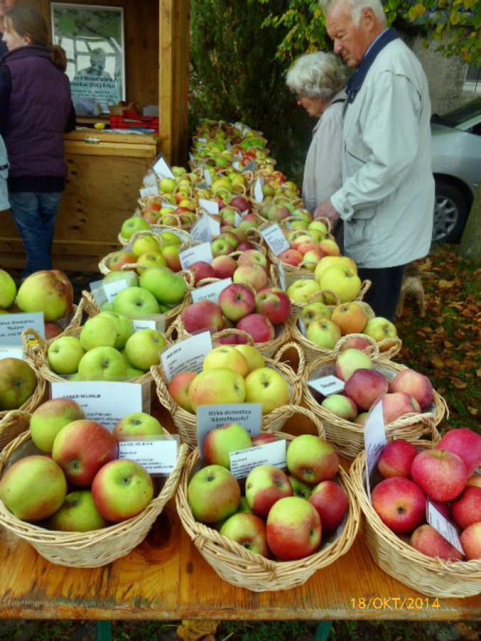 Apfelmarkt -18.10.14   (2d)