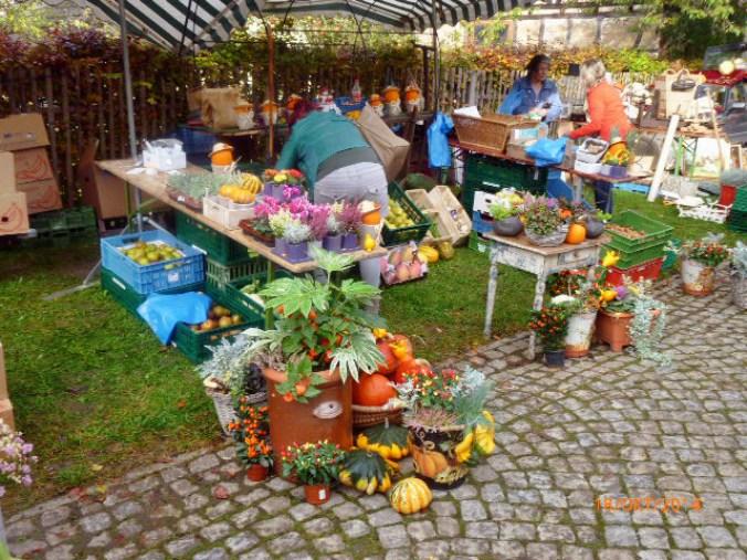 Apfelmarkt -18.10.14   (5)