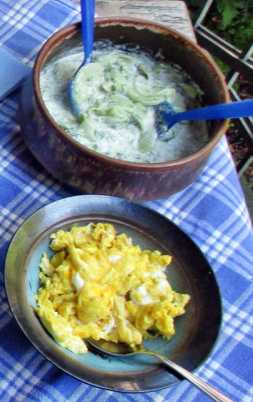 Kartoffelsalat,Ei,Gurkensalat - 25.7.15   (11)