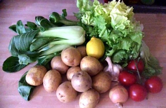 8.1.16 - Kartoffelgratin,Pak Choi,Endiviensalat,vegetarisch (3)