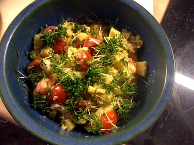 Pastinaken,Kartoffelstampf,Feldsalat,vegetarisch - 2.1.16   (2)