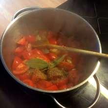10.2.16 - Kabeljau,Tomatensoße,Salat (12)