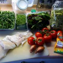 10.2.16 - Kabeljau,Tomatensoße,Salat (3)