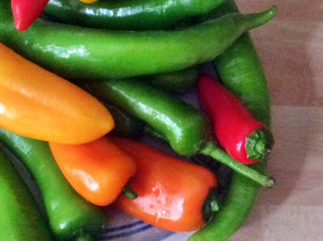 24.2.16 - Geschmorte Pepperoni,Reis,vegetarisch (4) - Kopie