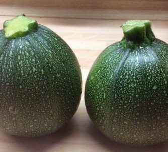 10.3.16 - gefüllte Zucchini,Tomatensoße,Reis,Salat (6)