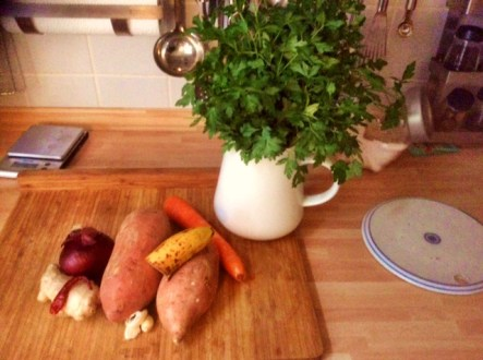 2.3.16 -Süßkartoffel-Curry Suppe (3)