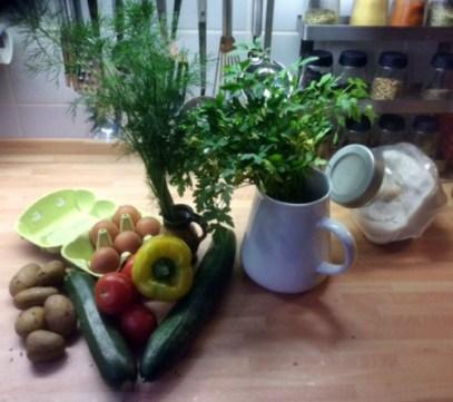 8.3.16 - Zucchini,Paprikasalat,Gurkensalat,Kartoffeln,Spiegelei (3)