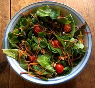 6.4.16 - Spinat Risotto,Salat,vegetarisch (7)