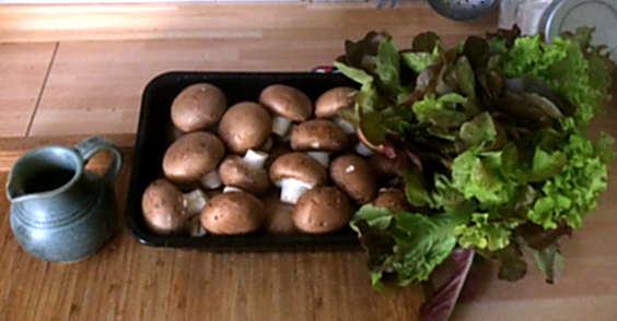 8.4.16 - Champignon,Frikadellen,Salat,Kartoffeln (3)