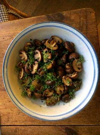 8.4.16 - Champignon,Frikadellen,Salat,Kartoffeln (8)