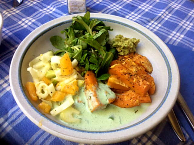 6.5.16 - Süßkartoffel,Fenchelsalat,Feldsalat,Guacamole,Joghurtdip (3)