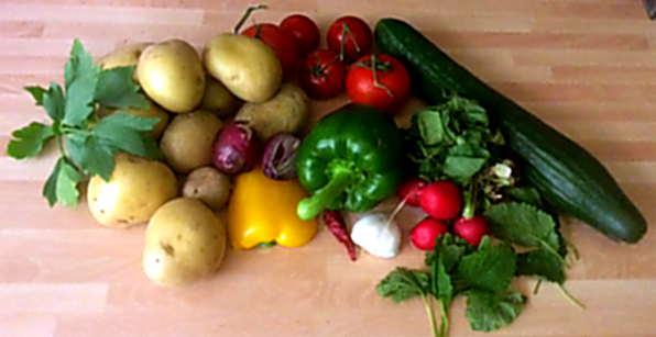 9.5.16 - Matjes,Kartoffeln,Salat,Obstsalat (4)