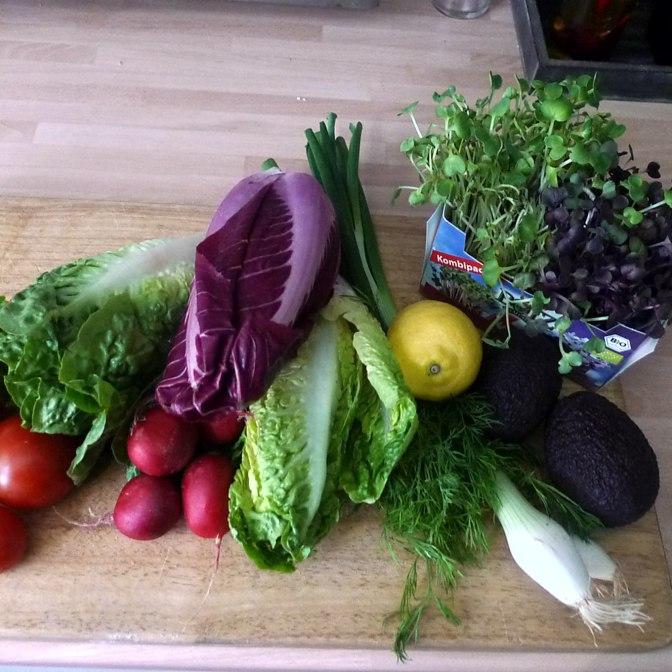 6.6.16 - Zitronenkartoffeln,Forelle,Salat (4)