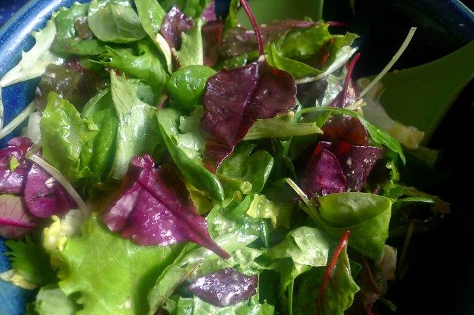 lachsforellemischsalatpellkartoffeln-8