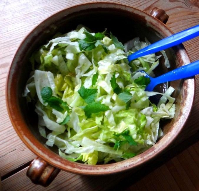 Bohnen,Thunfisch,Sellerie Salat (13)