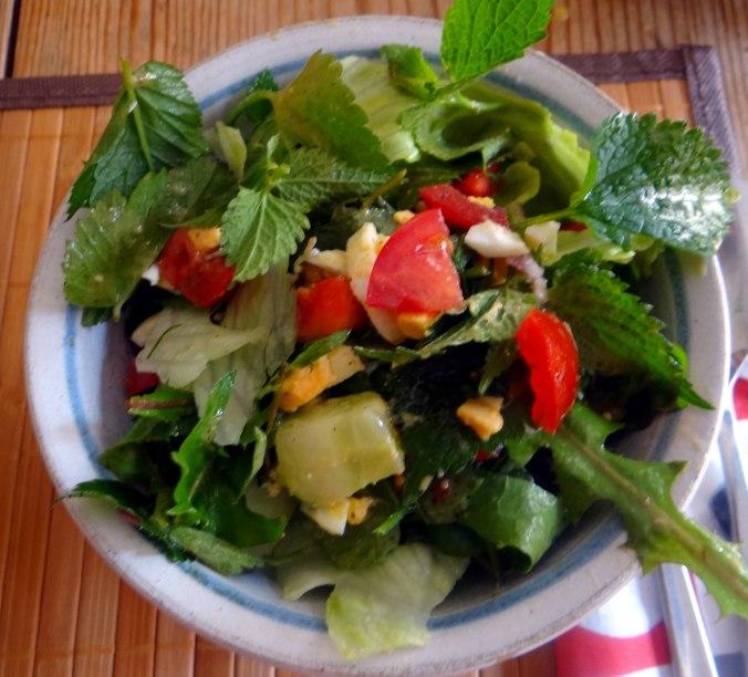 Wildkräuter Salat,Boullion Kartoffeln (5)