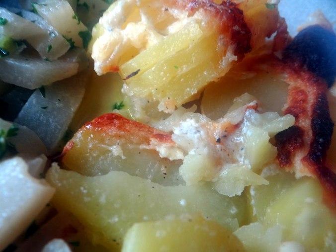 Kohlrabigemüse,Kartoffelgratin,vegetarisch (15)
