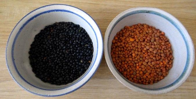 Muschel-Linsensalat,Gurkensalat,pescetarisch (7)