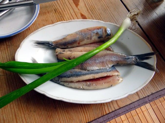 Matjes,Pellkartoffeln,Salat,Waffeln,Johannisbeeren (3)