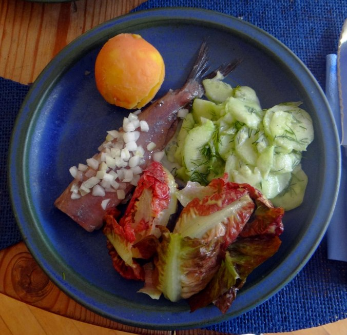Matjes,Salate,Pellkartoffeln (7)