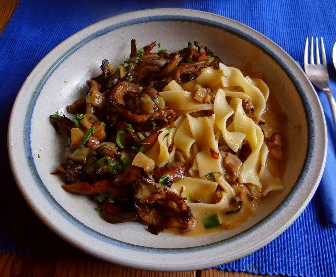 Austernpilze,Nudeln,Sauce (1)