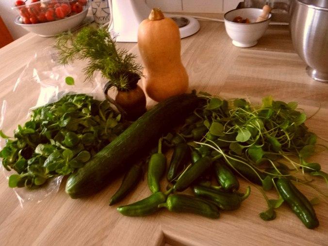 Kürbispüree,Tofu,Salate (4)