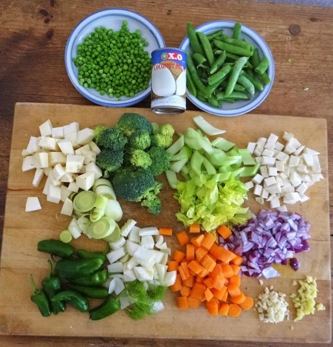 Gemüsesuppe,Süßkartoffel,Kokosmilch (6)