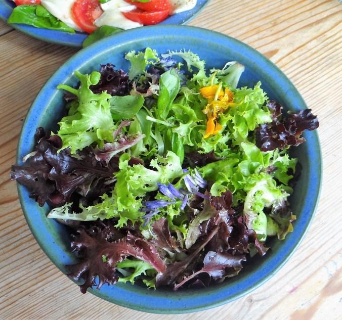 Caprese,Frisee Salat,Melone (3)