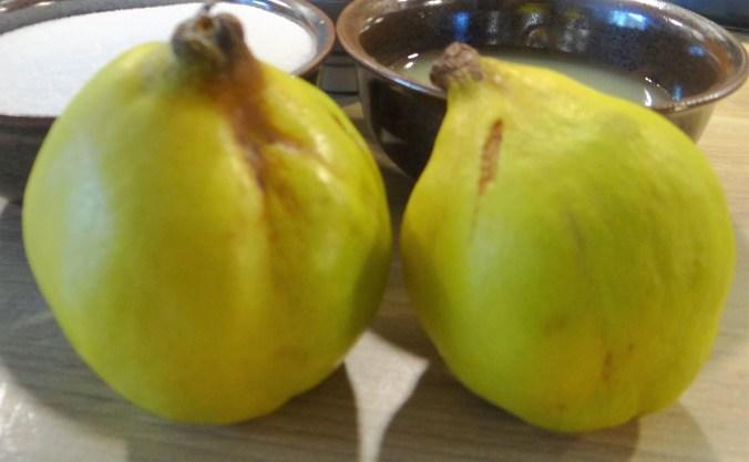 Orientalische Möhrensuppe und Quitten Dessert (14)