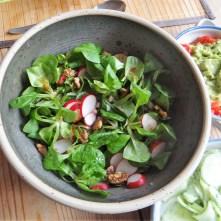 Lila Kartoffel,Guacamole,Salate (12)