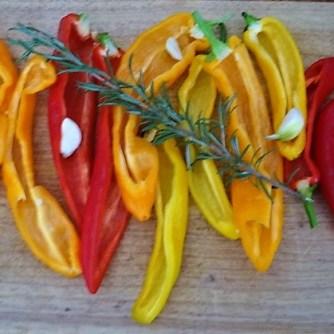 Paprika,Fenchel,Guacamole (8)