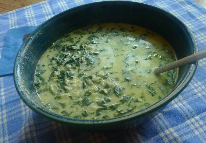 spinat-joghurt-suppevegetarisch-9