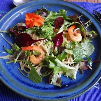 Limetten Spaghetti mit Garnelen und Brokkoli,bunter Salat (20)