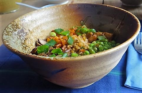 Reis mit Gemüse und Putenfleisch (21)