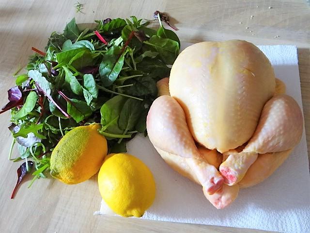Mais Poularde,mediterraner Salat,Klöße halb und halb (5)
