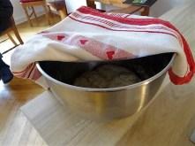 Muscheln in Tomatensauce und Paprikabrot (11)