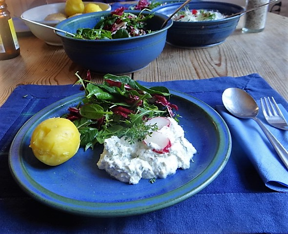 Quark,Kartoffeln,Salat (5)