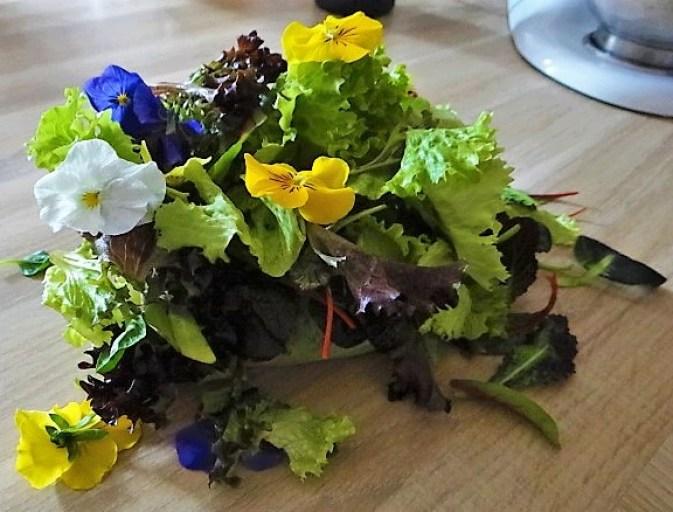 Salate und Feta (5)