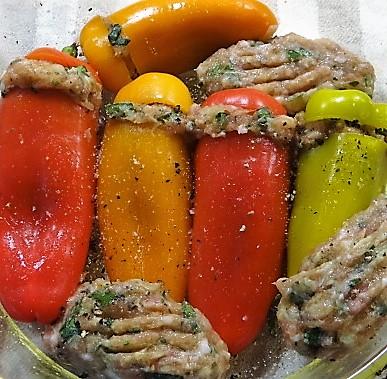gefüllte Snackpaprika,Krautsalat,Tzatziki (14)