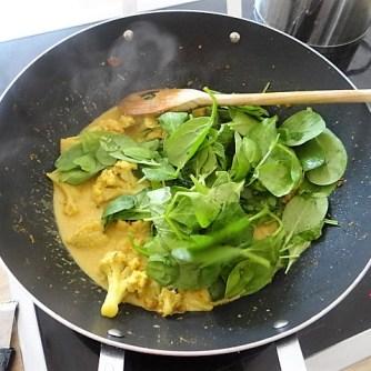 Blumenkohl Curry mit Blattspinat,Jasminreis (13)