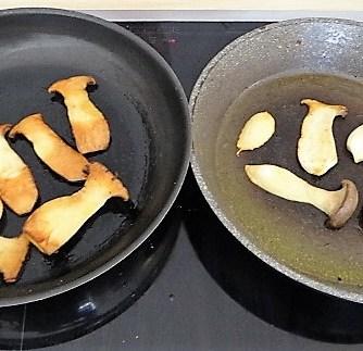 Kräutersaitlinge,Kartoffelrosen, Salat (11)