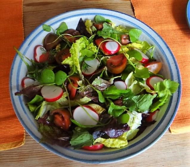 Wolfsbarsch,Salat,Kartoffeln (13)